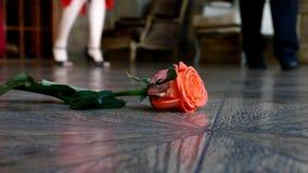 Κόκκινος αυξήθηκε στο πάτωμα απόθεμα βίντεο