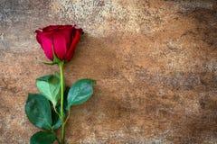 Κόκκινος αυξήθηκε στο σκουριασμένο υπόβαθρο άνδρας αγάπης φιλιών έννοιας στη γυναίκα Στοκ φωτογραφία με δικαίωμα ελεύθερης χρήσης