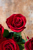 Κόκκινος αυξήθηκε στο σκουριασμένο υπόβαθρο άνδρας αγάπης φιλιών έννοιας στη γυναίκα Στοκ εικόνες με δικαίωμα ελεύθερης χρήσης