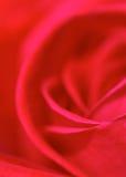 κόκκινος αυξήθηκε Στοκ Εικόνα