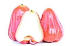 Κόκκινος αυξήθηκε juicy καρπός μήλων Στοκ εικόνες με δικαίωμα ελεύθερης χρήσης