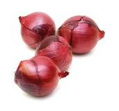 Κόκκινος βολβός κρεμμυδιών Στοκ φωτογραφία με δικαίωμα ελεύθερης χρήσης