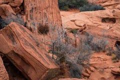Κόκκινος βράχος στην κόκκινη βράχου περιοχή συντήρησης φαραγγιών εθνική, ΗΠΑ Στοκ Φωτογραφίες