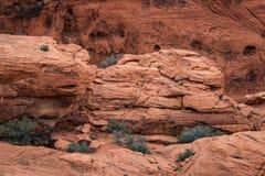 Κόκκινος βράχος στην κόκκινη βράχου περιοχή συντήρησης φαραγγιών εθνική, ΗΠΑ Στοκ φωτογραφία με δικαίωμα ελεύθερης χρήσης