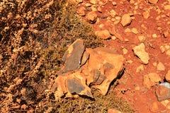 Κόκκινος βράχος Στοκ εικόνες με δικαίωμα ελεύθερης χρήσης