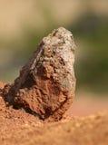κόκκινος βράχος Στοκ Φωτογραφίες