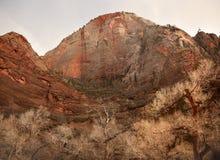 κόκκινος βράχος Utah πάρκων φ&alpha Στοκ φωτογραφία με δικαίωμα ελεύθερης χρήσης