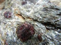 Κόκκινος γρανάτης σε έναν γκρίζο βράχο στοκ εικόνες