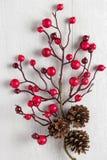 Κόκκινος ελαιόπρινος μούρων στο λευκό Στοκ φωτογραφία με δικαίωμα ελεύθερης χρήσης
