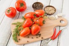 Κόκκινος - εύγευστες ντομάτες Στοκ εικόνα με δικαίωμα ελεύθερης χρήσης