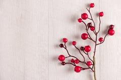 Κόκκινος ελαιόπρινος μούρων στο λευκό Στοκ Εικόνες