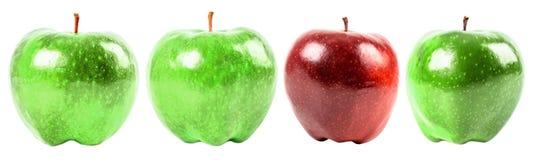 Κόκκινος - η εύγευστη Apple μεταξύ των πράσινων μήλων Στοκ φωτογραφίες με δικαίωμα ελεύθερης χρήσης