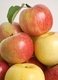 κόκκινος κίτρινος μήλων Στοκ Φωτογραφία