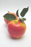 κόκκινος κίτρινος μήλων Στοκ φωτογραφία με δικαίωμα ελεύθερης χρήσης
