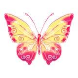 Κόκκινος-κίτρινο πεταλούδων Watercolor Στοκ φωτογραφίες με δικαίωμα ελεύθερης χρήσης