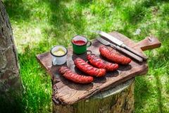Κόκκινος - καυτά λουκάνικα με τα καρυκεύματα και δεντρολίβανο στον κήπο Στοκ Φωτογραφίες