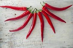 Κόκκινος - καυτά πιπέρια τσίλι Στοκ Εικόνες