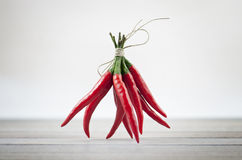 Κόκκινος - καυτά πιπέρια Στοκ φωτογραφία με δικαίωμα ελεύθερης χρήσης