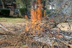 Κόκκινος - καυτή καίγοντας βούρτσα πυρκαγιάς στοκ εικόνες