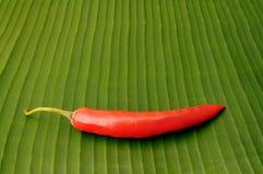 Κόκκινος - καυτό πιπέρι τσίλι στο φύλλο μπανανών Στοκ Εικόνα