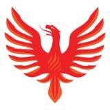 Κόκκινος - καυτό τσίλι Φοίνικας Στοκ Εικόνα