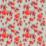 Κόκκινος κλάδος σφενδάμνου με το φανάρι εγγράφου ασιατικό πρότυπο άνευ ραφής watercolor Στοκ εικόνες με δικαίωμα ελεύθερης χρήσης