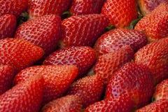 Κόκκινος μακρο στενός επάνω υποβάθρου φραουλών Στοκ Εικόνες