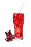κόκκινος μαλακός ποτών στοκ φωτογραφία με δικαίωμα ελεύθερης χρήσης