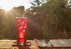 κόκκινος μαλακός ποτών στοκ εικόνες με δικαίωμα ελεύθερης χρήσης