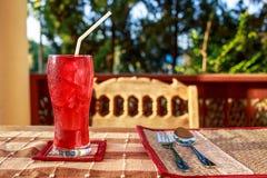 κόκκινος μαλακός ποτών στοκ εικόνα με δικαίωμα ελεύθερης χρήσης