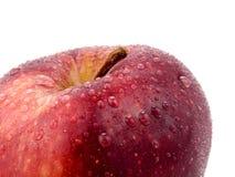 κόκκινος νόστιμος μήλων Στοκ Εικόνες