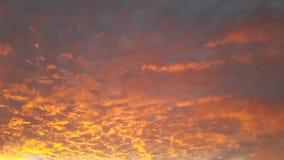Κόκκινος ουρανός στο μπλε ουρανό του Μαρόκου με Sun& x27 το s λάμπει και φοίνικες στοκ εικόνες
