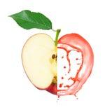 Κόκκινος παφλασμός μήλων Στοκ Εικόνα