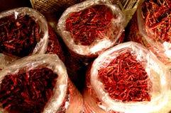 κόκκινος πικάντικος πιπ&epsilon Στοκ Φωτογραφία