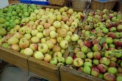 Κόκκινος πράσινος της Apple στο ράφι στο κατάστημα Στοκ Εικόνες
