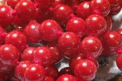 Κόκκινος στενός επάνω περιδεραίων μαργαριταριών στοκ εικόνες