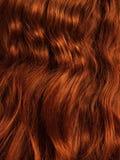 Κόκκινος στενός επάνω τρίχας, σγουρός και απρόσεκτος στοκ εικόνες με δικαίωμα ελεύθερης χρήσης