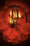 Κόκκινος στρογγυλός βολβός αλόγονου Στοκ φωτογραφία με δικαίωμα ελεύθερης χρήσης
