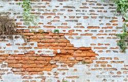 κόκκινος τοίχος τεμαχίων Στοκ Εικόνες