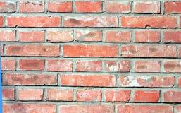 κόκκινος τοίχος τούβλου Στοκ Φωτογραφία