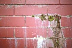 κόκκινος τοίχος Στοκ Φωτογραφίες