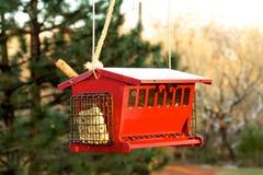 Κόκκινος τροφοδότης πουλιών Στοκ εικόνες με δικαίωμα ελεύθερης χρήσης