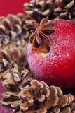 κόκκινος χειμώνας πεύκων κώνων μήλων Στοκ Φωτογραφία