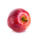 κόκκινος ώριμος μήλων Στοκ Φωτογραφία