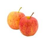 Κόκκινος ώριμος της Apple Στοκ Φωτογραφίες