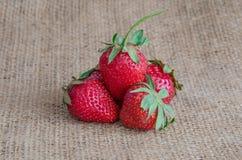 Κόκκινος ώριμος φραουλών, με τα πράσινα φύλλα Στοκ φωτογραφία με δικαίωμα ελεύθερης χρήσης