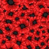 Κόκκινο άνευ ραφής σχέδιο λουλουδιών παπαρουνών Για το υφαντικό σχέδιο υφάσματος Στοκ φωτογραφίες με δικαίωμα ελεύθερης χρήσης