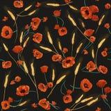Κόκκινο άνευ ραφής σχέδιο παπαρουνών watercolor Στοκ φωτογραφία με δικαίωμα ελεύθερης χρήσης