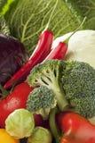 Κόκκινο λάχανο Βρυξέλλες άσπρων λάχανων μπρόκολου ντοματών chilis πιπεριών κουδουνιών - οι νεαροί βλαστοί κλείνουν επάνω Στοκ Φωτογραφίες