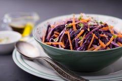 Κόκκινο λάχανο, καρότο, κρεμμύδι και σαλάτα νεαρών βλαστών ραδικιών Στοκ Εικόνες